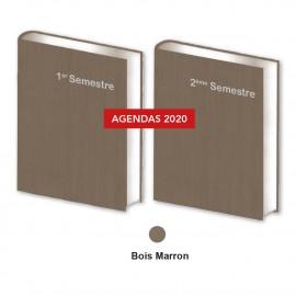 Lot de  2 Agendas Semestriels Marron 2020