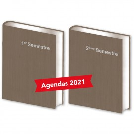 Lot de  2 Agendas Semestriels Bois Panachés 2021