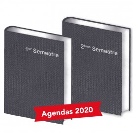 Lot de  2 Agendas Semestriels Bleu Gris 2020